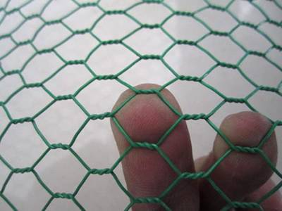 Apiece of PVC coated garden fence and the finger is trying to passing through the hole.